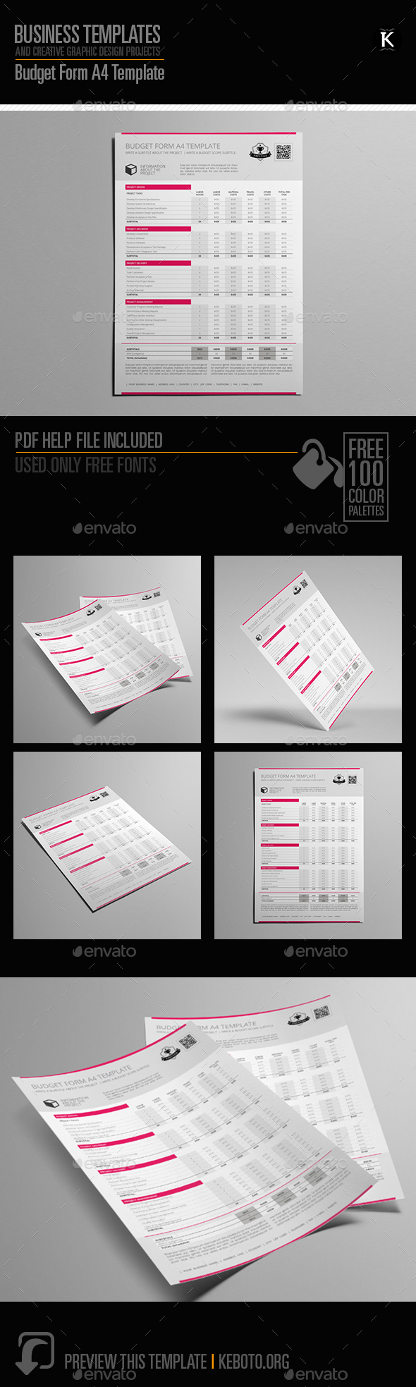 GraphicRiver Budget Form A4 Template 20646359