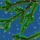 Christmas Tree Branches - VideoHive Item for Sale