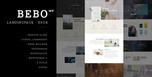 BEBO - Book/eBook/ISSUE + Author Landing Page - Marketing Corporate