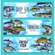 Vector Banners for Fishing or Fish Sea Life - GraphicRiver Item for Sale
