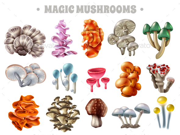 GraphicRiver Magic Mushrooms Set 20653144