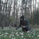 Girl Collecting Flowers in Spring Forest - VideoHive Item for Sale