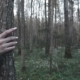 Girl's Hand Touches the Tree in Spring Forest - VideoHive Item for Sale