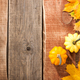 Thanksgiving background with pumpkins and maple leaves - PhotoDune Item for Sale
