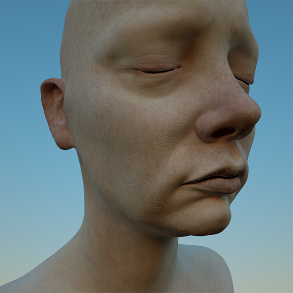3DOcean 3D female head OBJ & ZTL Mia and her Sisters 20654689