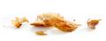 Croissant crumbs macro