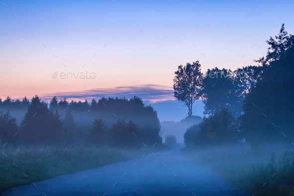 Misty road - Stock Photo - Images