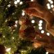 Putting Christmas Ball
