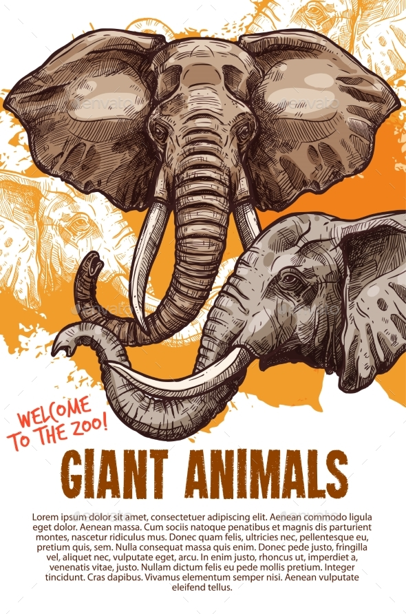 GraphicRiver African Animals Elephants Zoo Vector Poster 20660105