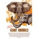African Animals Elephants Zoo Vector Poster - GraphicRiver Item for Sale