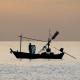 Fisherman At Sea