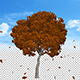 Leaves Falling Off Tree Ver.2 - VideoHive Item for Sale
