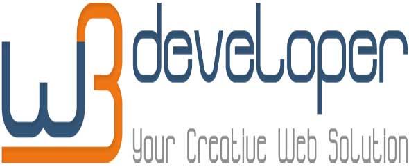 W3 developer