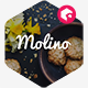 Molino - Food Presentation Template