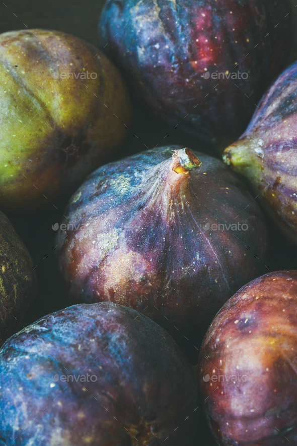Close-up of fresh ripe seasonal purple figs, vertical composition - Stock Photo - Images