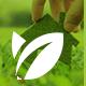 Green Planet | Environmental Non-Profit Organization - ThemeForest Item for Sale