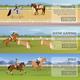 Equestrian Sport Flat Horizontal Banners
