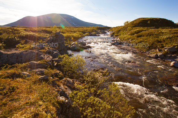 sunny landscape Norway mountains Dovrefjell river - Stock Photo - Images