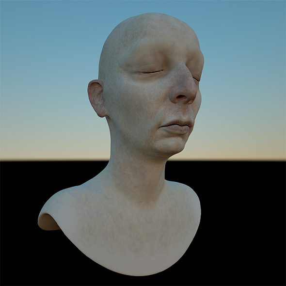 FUSIA 3D female head model (OBJ & ZTL) (Mia and her Sisters / Fusia) - 3DOcean Item for Sale