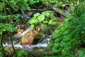 Flowing water between the boulders