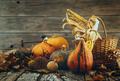 Thanksgiving  - PhotoDune Item for Sale