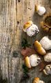 Mushrooms - PhotoDune Item for Sale
