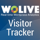 Analytics Plugin for WordPress & WooCommerce, Visitor Tracker  by Wolive