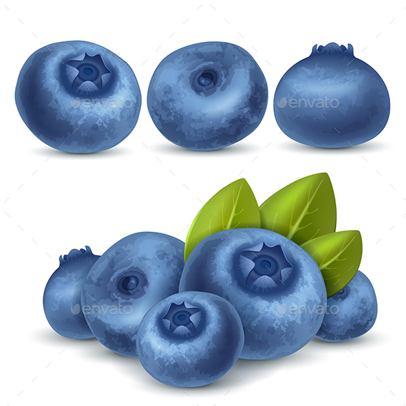 Ripe Blueberry - Food Objects