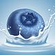 Blueberry in Water Splash