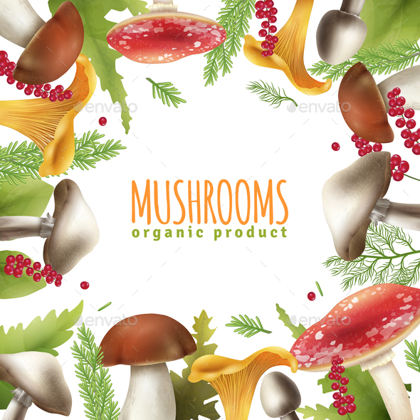 Mushrooms Frame Realistic Background Poster - Food Objects