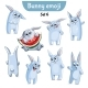 Set of Rabbit Characters Set 6