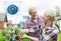 senior couple harvesting currant at summer garden