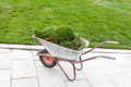 pieces of turf on a wheelbarrow near green lawn - PhotoDune Item for Sale
