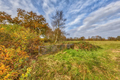 Autumn landscape in Drenthe