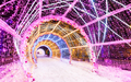 Decorated for Christmas and New Year decorative tunnel