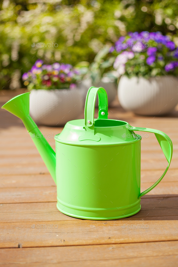 watering can and pansy flowers in flowerpots in garden - Stock Photo - Images