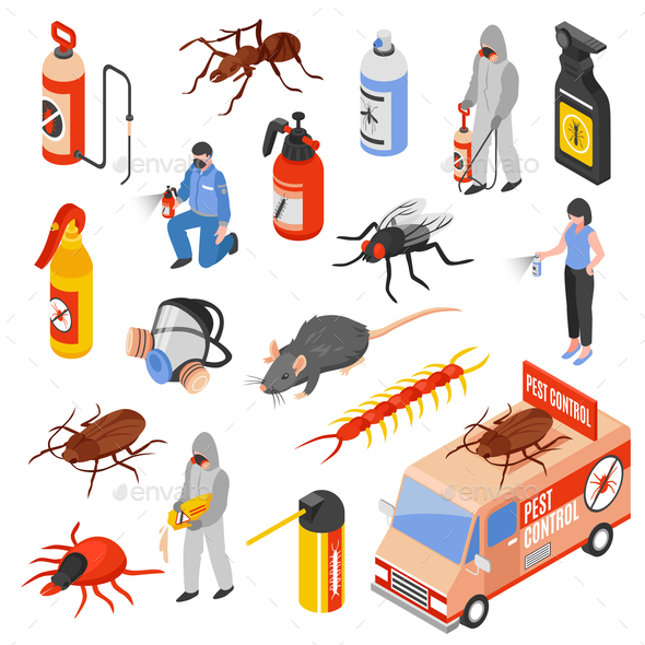 Pest Control 3d Isomeric Set - Services Commercial / Shopping