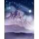 The Christmas Star of Bethlehem Illustration - GraphicRiver Item for Sale