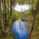 Finland forest landscape at Pieni Karhunkierros trail. Autumn season. Vertical - PhotoDune Item for Sale
