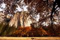 Autumn in Yosemite - PhotoDune Item for Sale