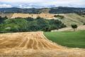 Summer landscape between Guiglia and Bologna