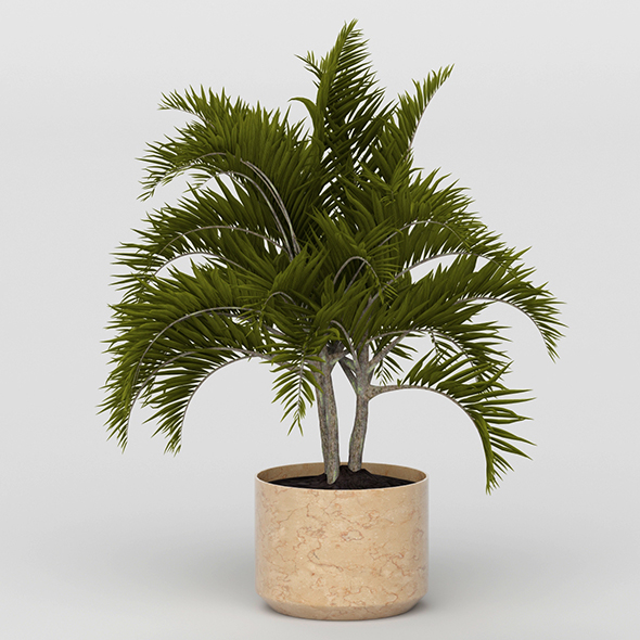 3DOcean Vray Ready Potted Plant 20692292
