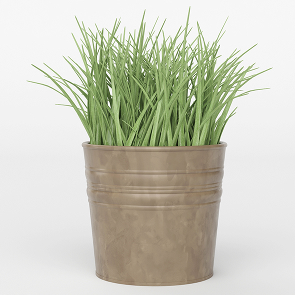 3DOcean Vray Ready Potted Plant 20692406