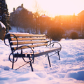 Bench in city park at winter