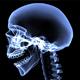 Xray Skeleton Body - VideoHive Item for Sale
