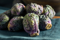 Raw Green and Purple Brussel Sprouts - PhotoDune Item for Sale
