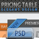 Elegant and Clean Pricing Table Design  - GraphicRiver Item for Sale