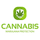 Cannabis Protection - GraphicRiver Item for Sale