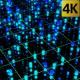 Lights Data Network Technology