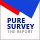 Pure Survey Power Point Presentation - GraphicRiver Item for Sale
